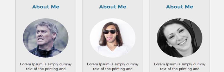 WordPress About US Post Type Plugin Banner Image