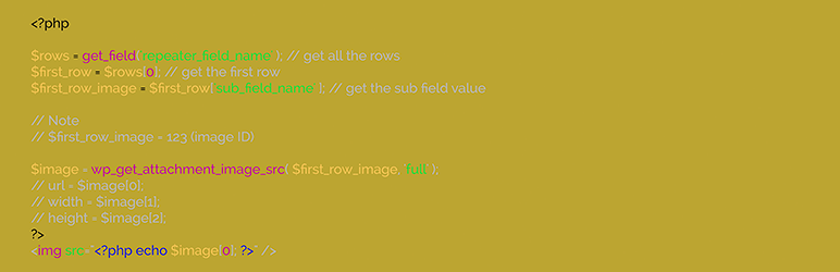 WordPress Advanced Custom Fields Code Snippets Plugin Banner Image