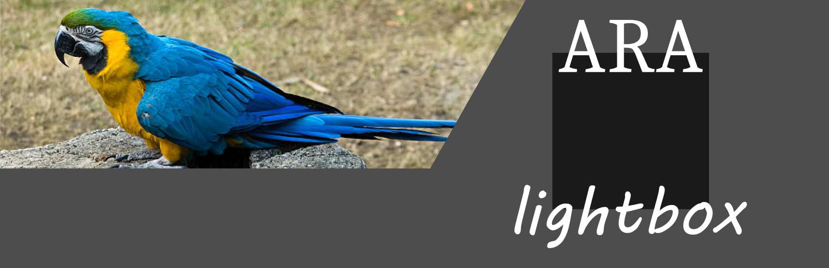 WordPress Ara Lightbox Plugin Banner Image