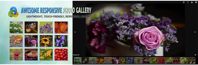 WordPress Image Gallery – Responsive Photo Gallery Plugin Banner Image
