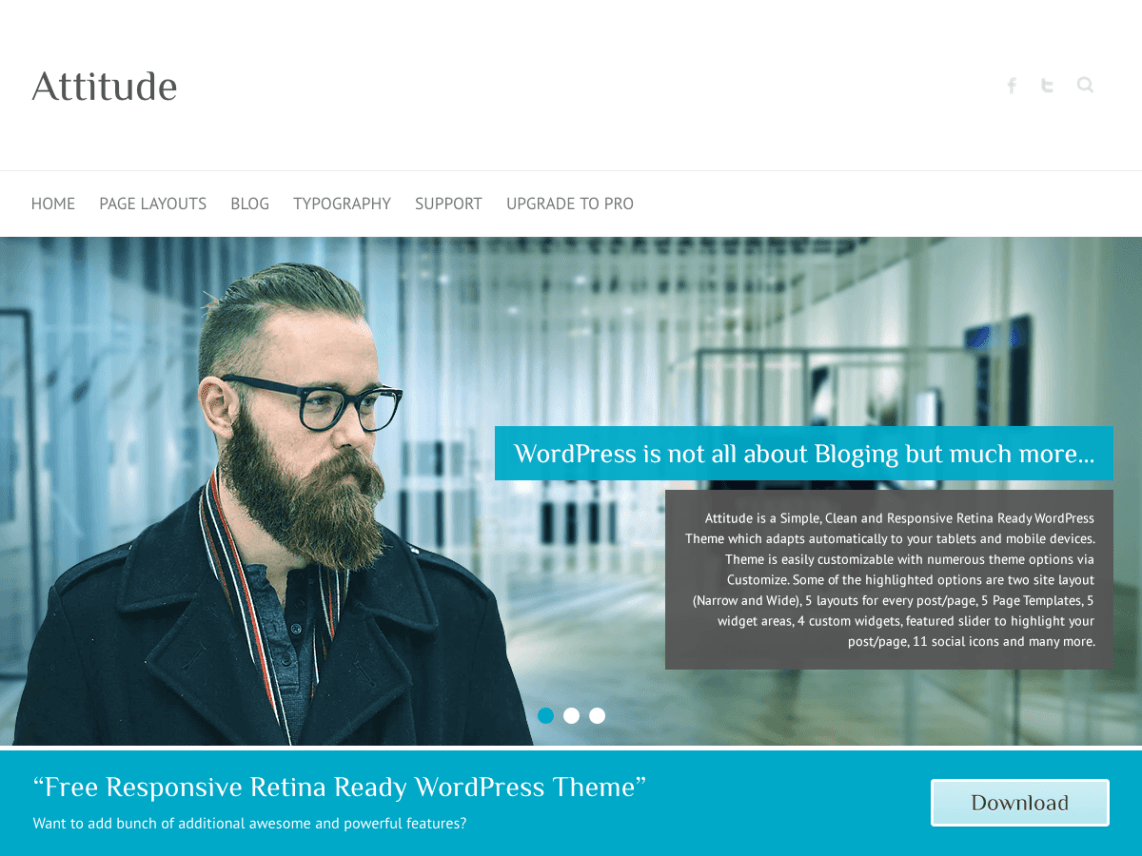 WordPress theme attitude