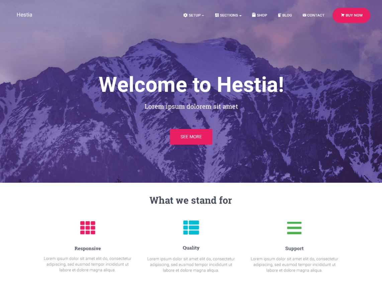 WordPress theme hestia