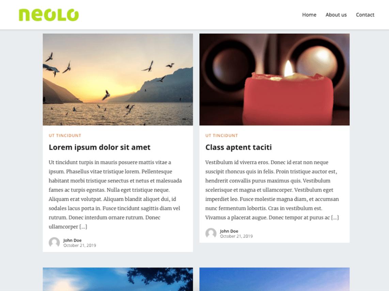 WordPress theme neolo